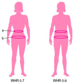 I am sexyy tiny girl small waist big hips and big fake